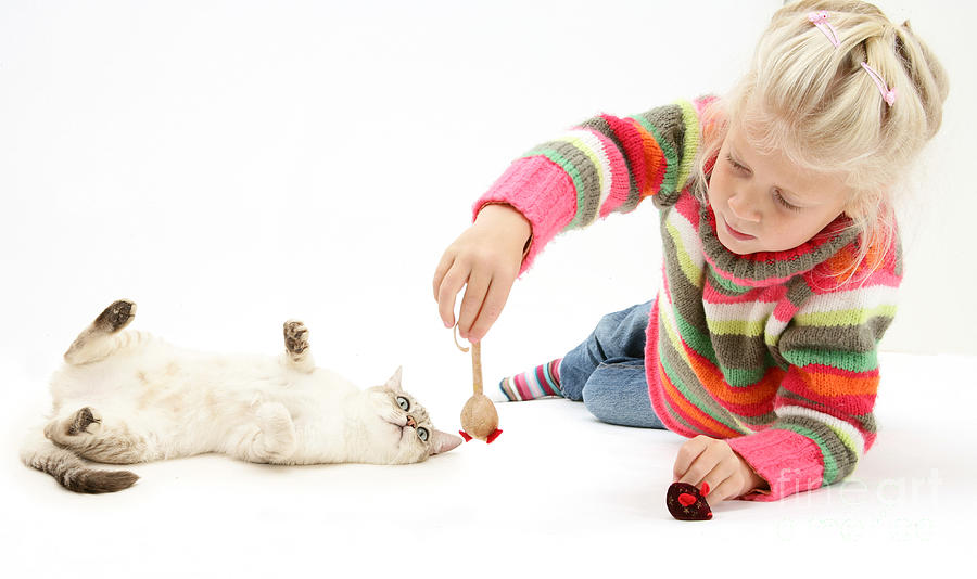 Girl Playing With Cat Photograph