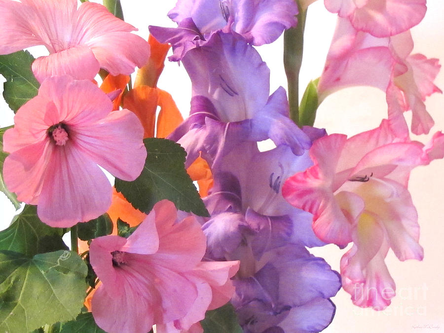Gladiola Bouquet Photograph