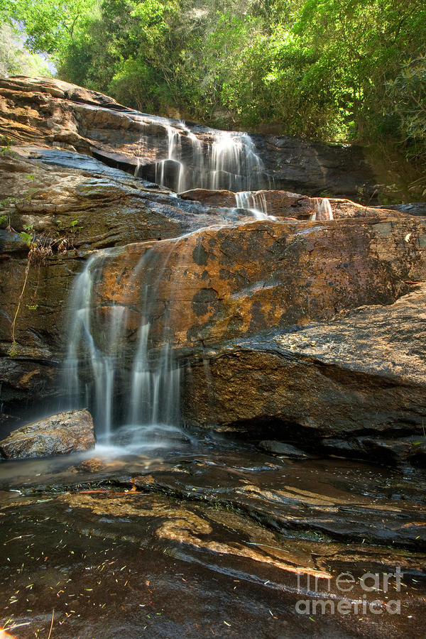 Glen Falls Portrait Photograph  - Glen Falls Portrait Fine Art Print