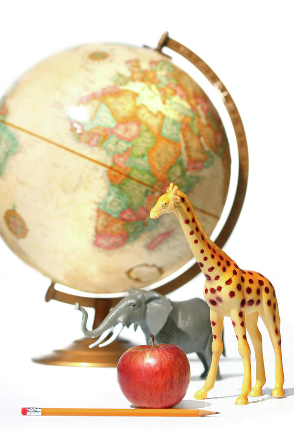 Globe With Toys Animals On White Photograph  - Globe With Toys Animals On White Fine Art Print