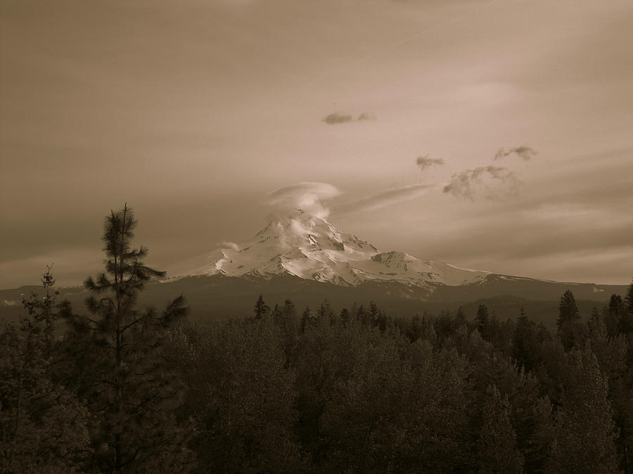 Glowing Mt. Hood Photograph  - Glowing Mt. Hood Fine Art Print