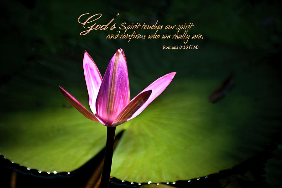 Gods Spirit Photograph