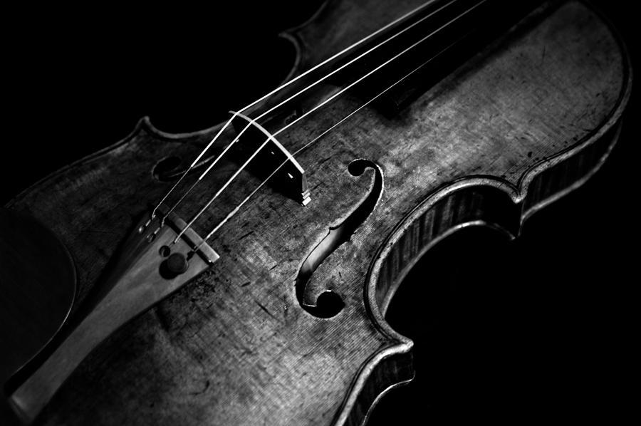 Goffriller Violin Blac...