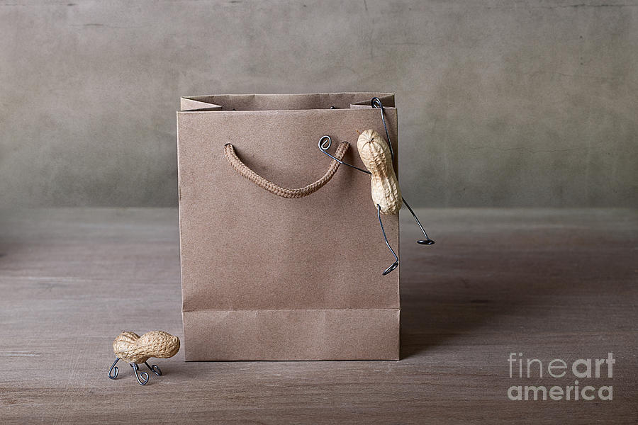 Peanut Photograph - Going Shopping 03 by Nailia Schwarz