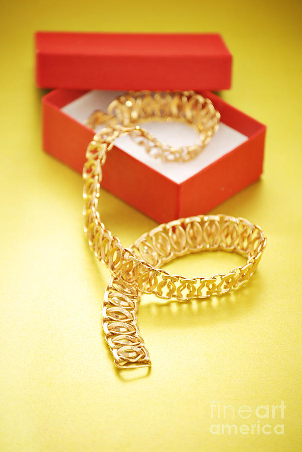 Gold Necklace Photograph  - Gold Necklace Fine Art Print