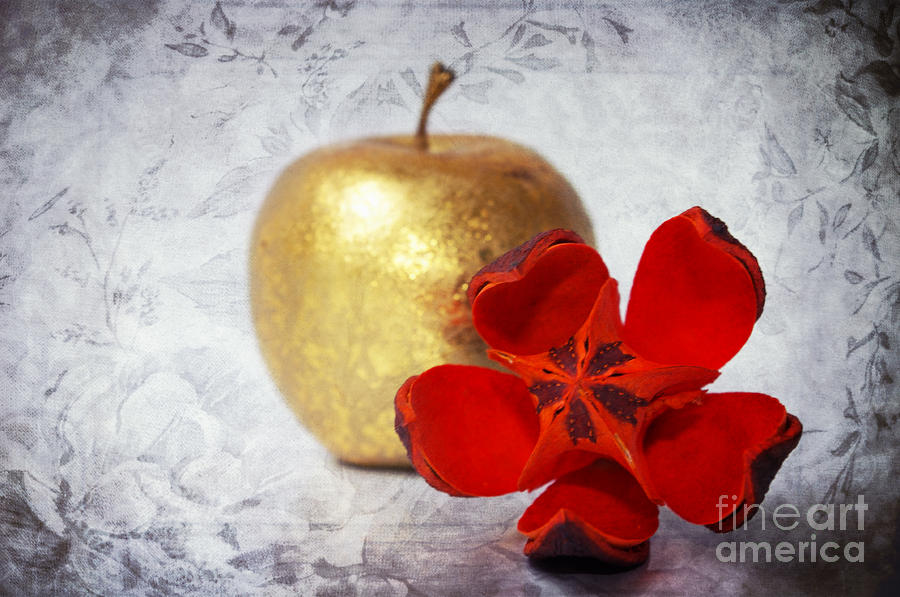 Golden Apple Photograph  - Golden Apple Fine Art Print
