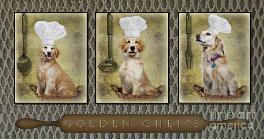 Golden Chefs Photograph  - Golden Chefs Fine Art Print