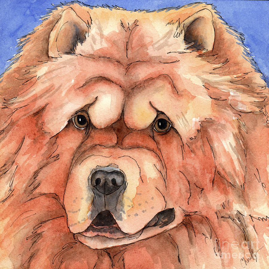 Golden Chow Chow Dog Painting  - Golden Chow Chow Dog Fine Art Print