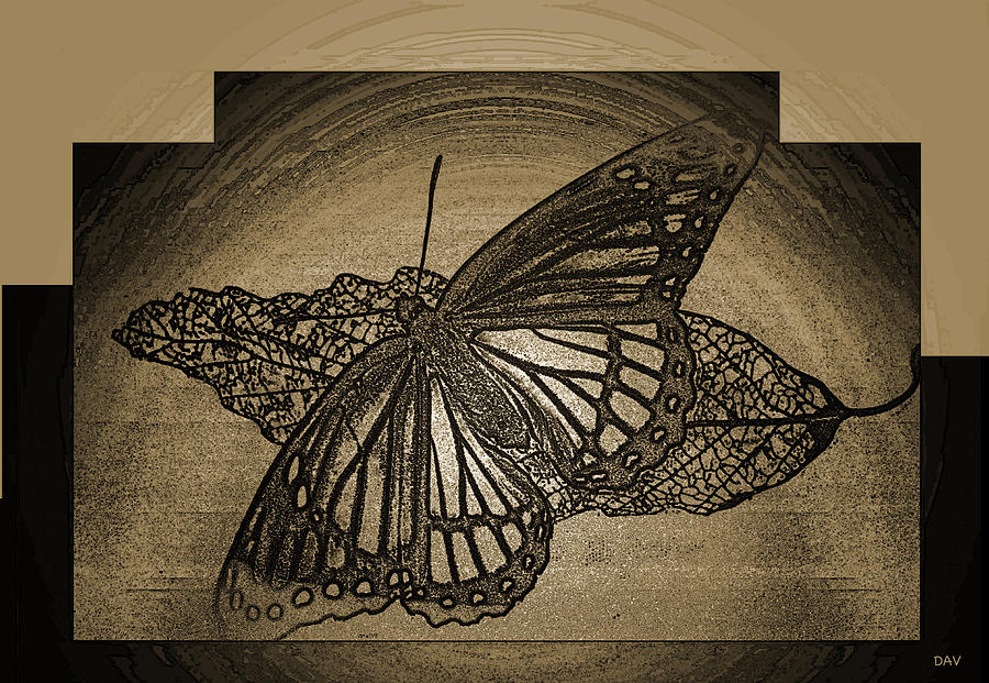 Golden Etch Butterfly Mixed Media  - Golden Etch Butterfly Fine Art Print