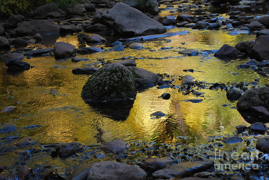 Golden Fall Reflection Photograph