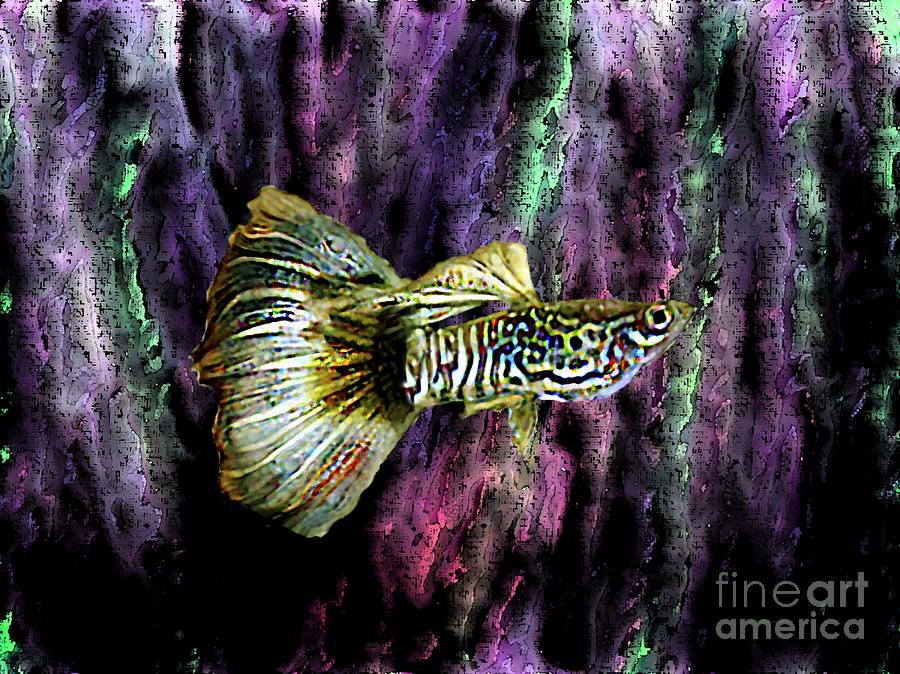 Golden Fish Digital Art  - Golden Fish Fine Art Print