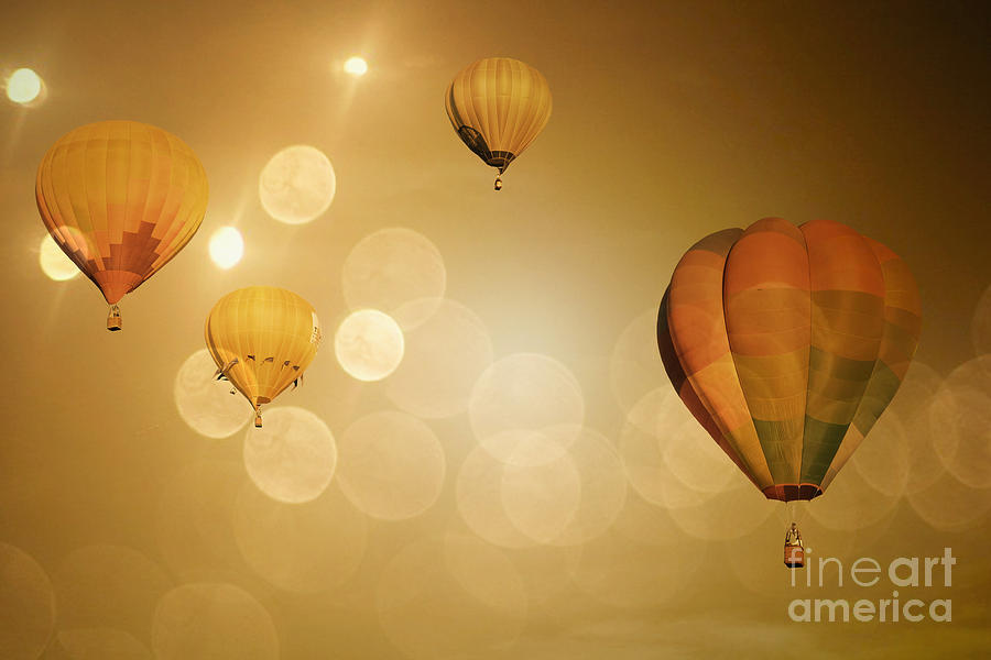 Golden Flight Photograph  - Golden Flight Fine Art Print