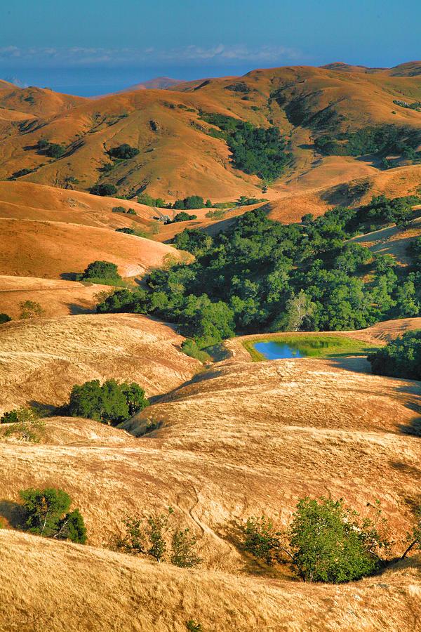 Moutains Photograph - Golden Hills II by Steven Ainsworth