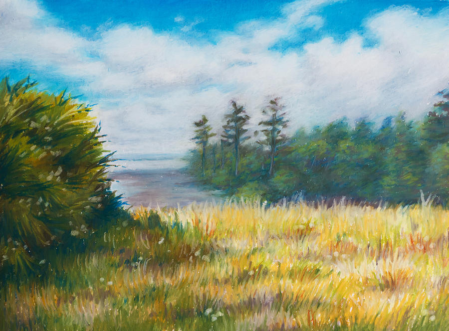 Golden Meadow In The Sun Drawing  - Golden Meadow In The Sun Fine Art Print
