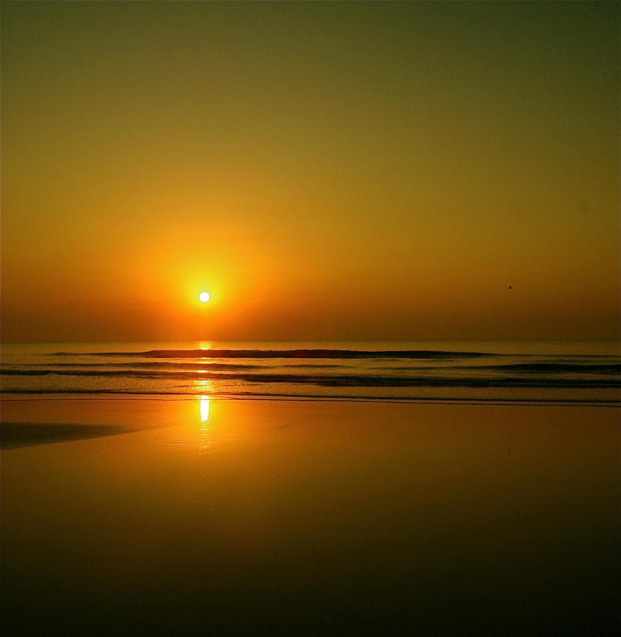 Golden Sunrise Photograph