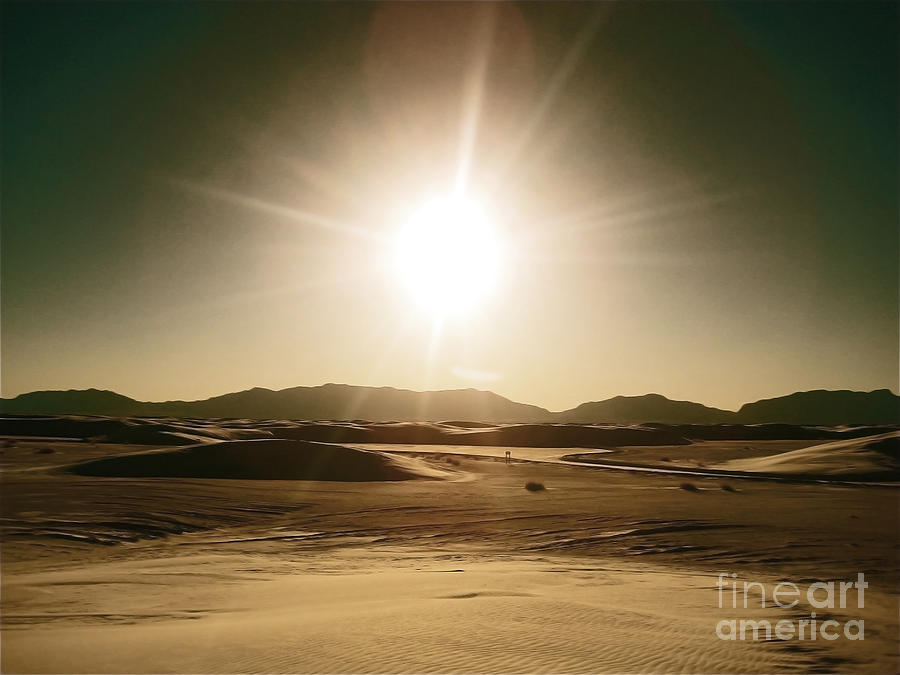 Golden Sunset Sands Photograph  - Golden Sunset Sands Fine Art Print