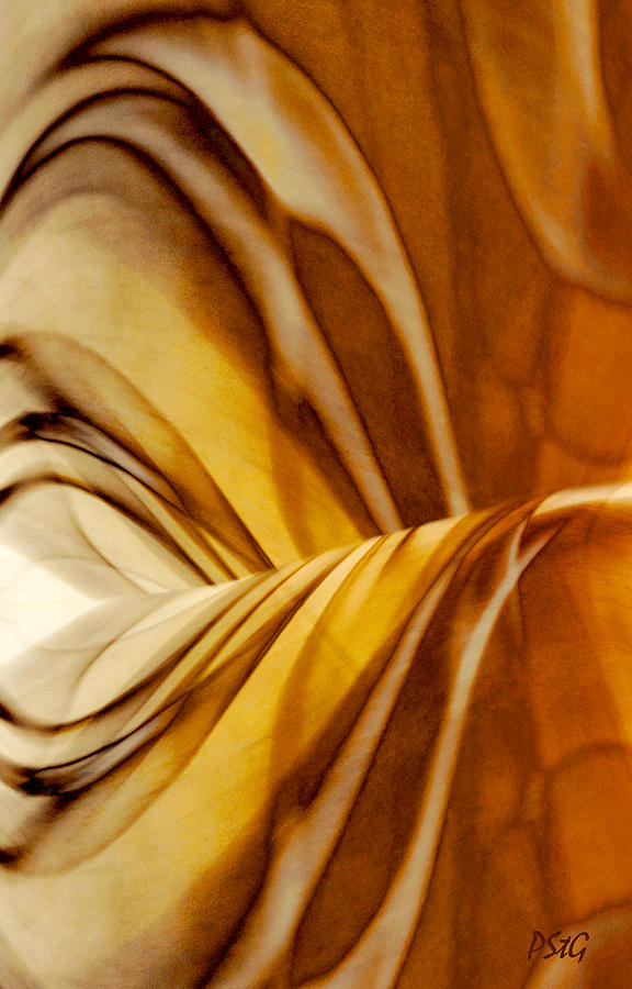 Golden Swirl Digital Art  - Golden Swirl Fine Art Print