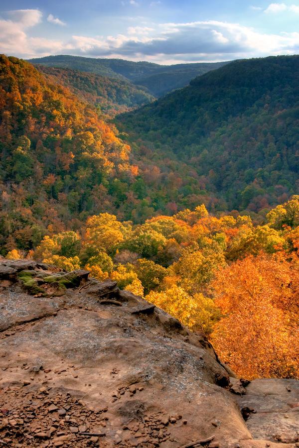 Golden Valleys Photograph