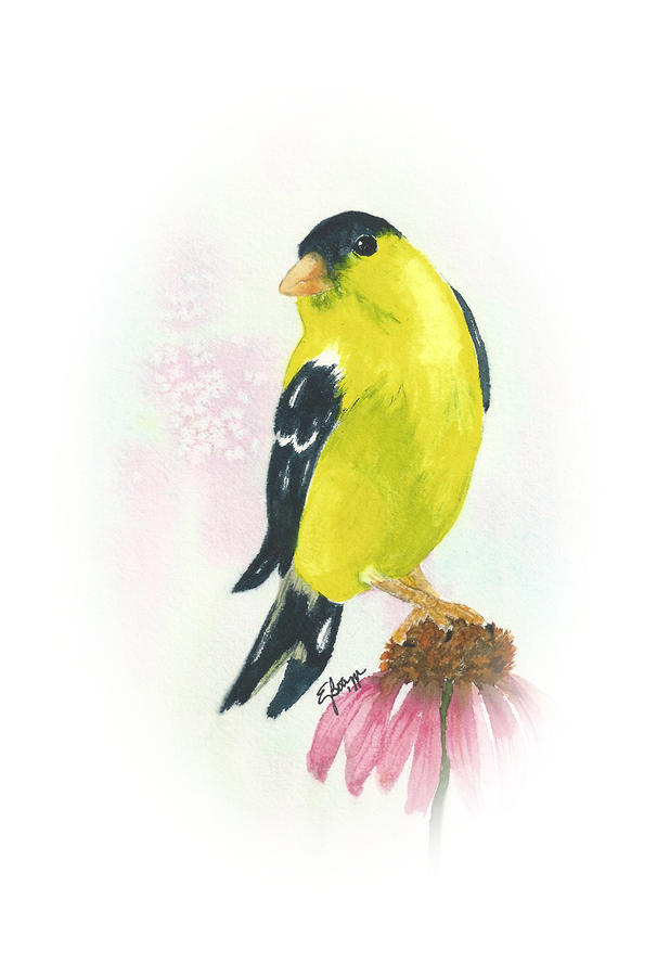 Goldfinch On Coneflower Painting  - Goldfinch On Coneflower Fine Art Print