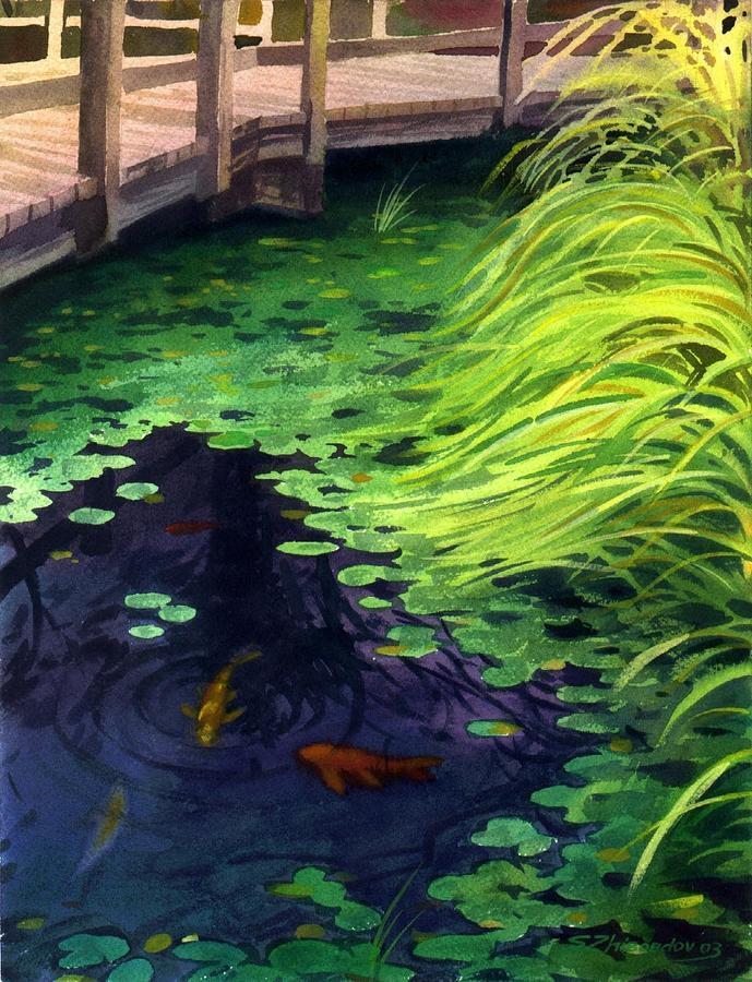 Goldfish pond by sergey zhiboedov for Goldfish pond kits