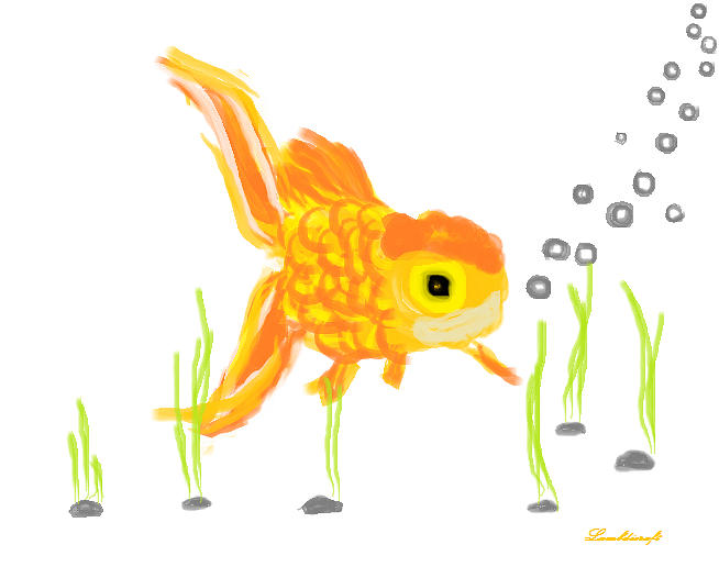 Goldfish Drawing