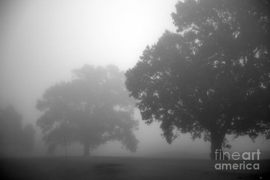 Golf Course With Fog Photograph