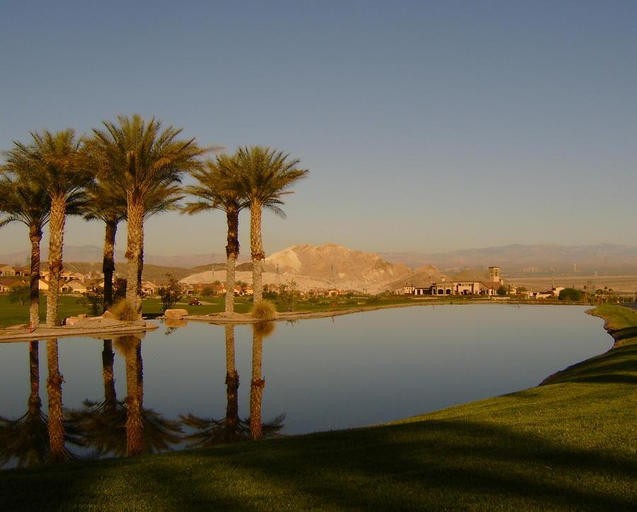 Golfing Oasis Photograph