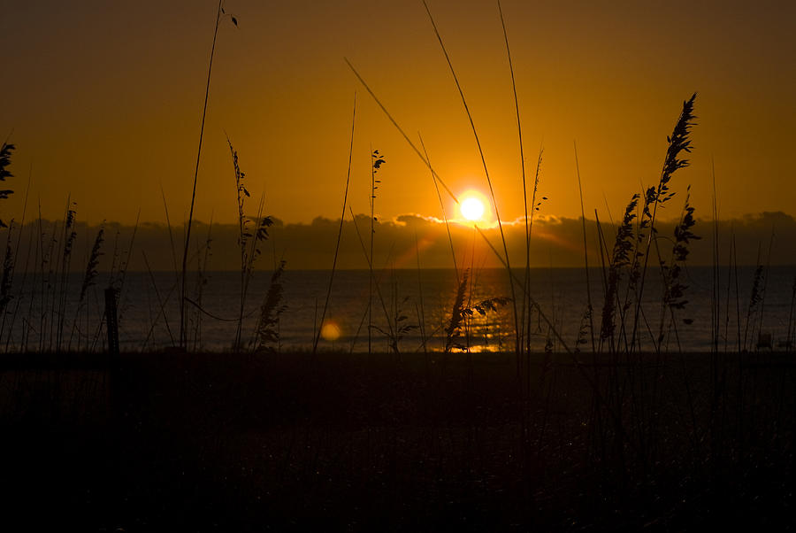 Sunrise. Ocean Photograph - Good Morning by Cindy Rubin