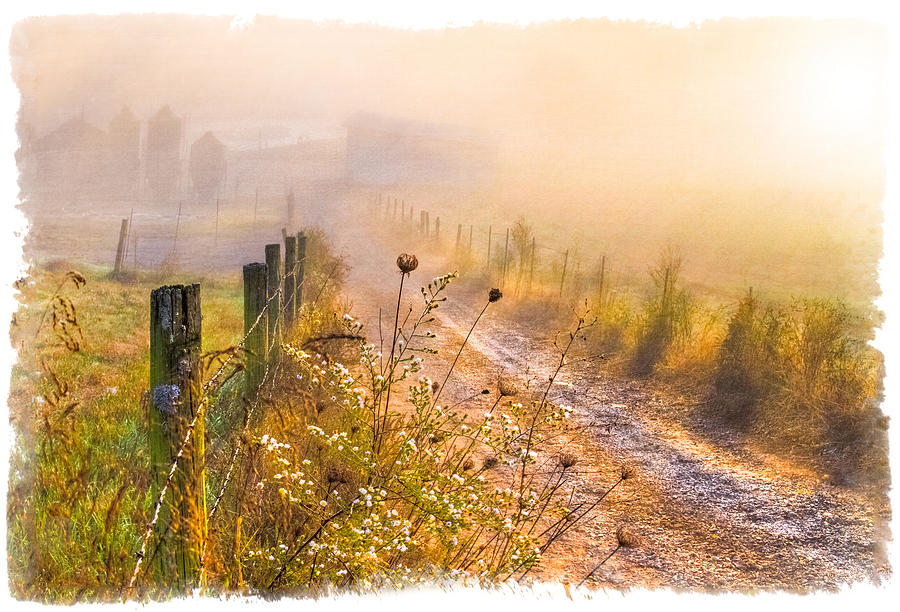 Good Morning Farm Photograph  - Good Morning Farm Fine Art Print