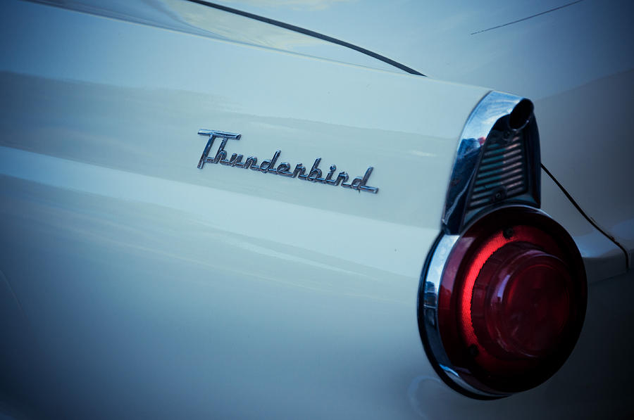Thunderbird Photograph - Good Times by Trish Tritz