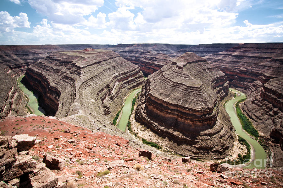 Goosenecks State Park In Utah Photograph