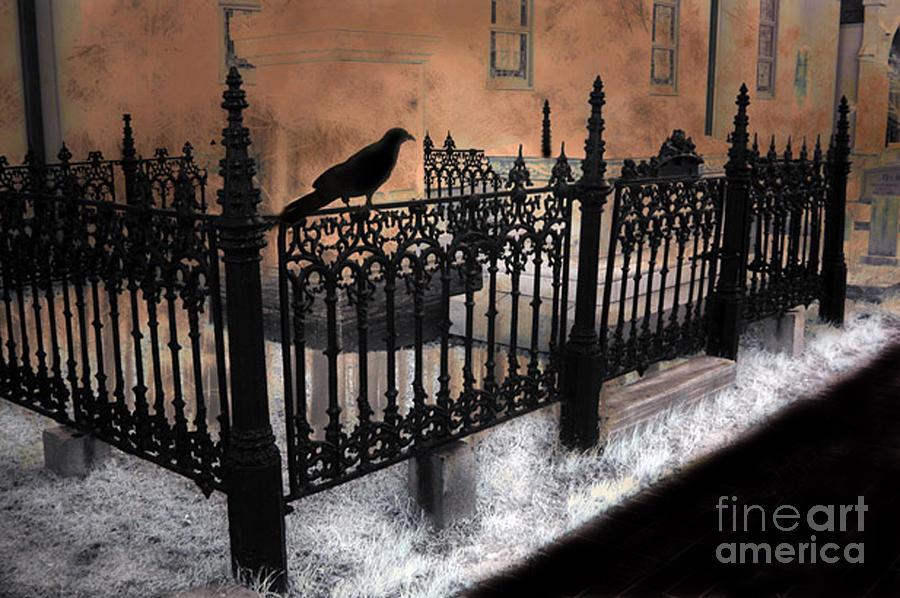 Gothic Cemetery Raven Photograph