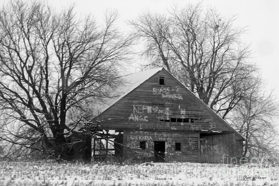 Graffiti Barn Photograph  - Graffiti Barn Fine Art Print