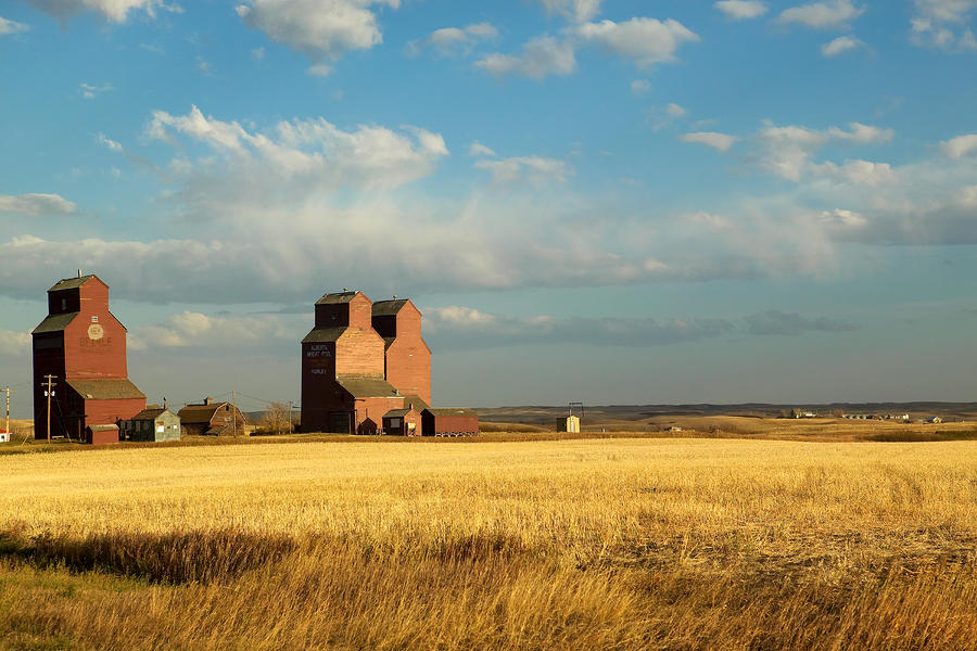 Grain Elevators Stand In A Prairie Photograph