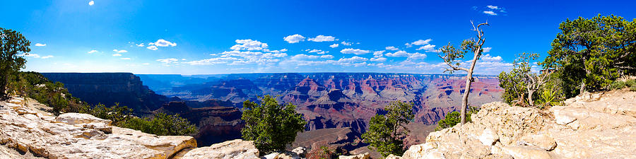 Grand Canyon Panorama White Photograph by David Waldo