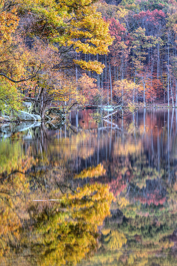 Grand Reflections Photograph  - Grand Reflections Fine Art Print