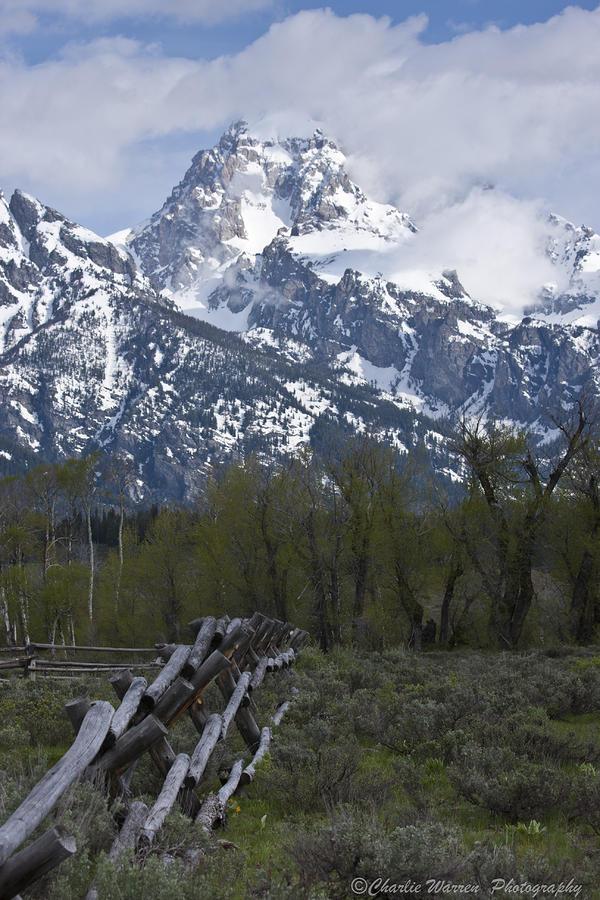 Grand Tetons Photograph - Grand Teton Fence by Charles Warren