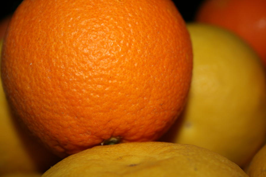 Grapefruit Orange Photograph  - Grapefruit Orange Fine Art Print
