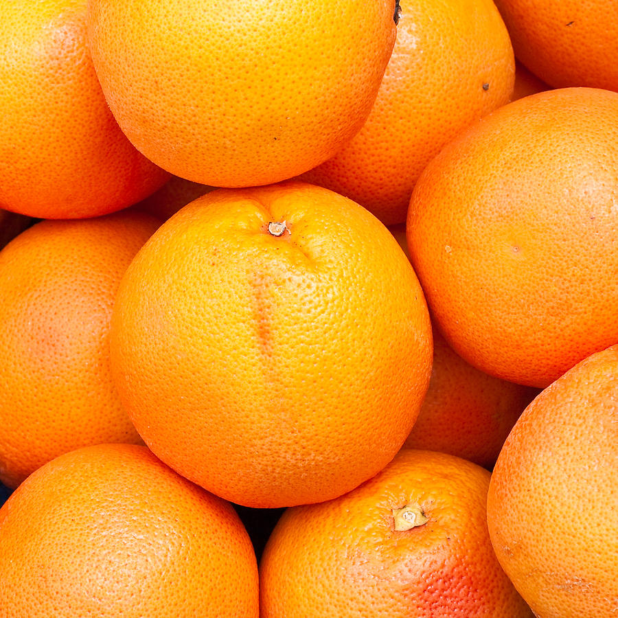 Grapefruit Photograph