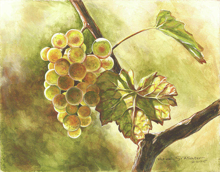Grapes Drawing  - Grapes Fine Art Print