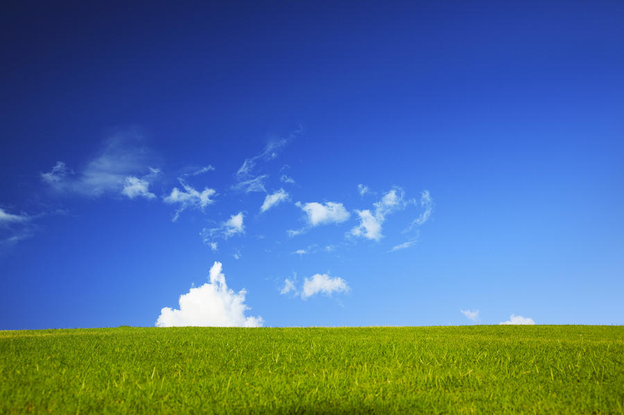 Grass Cloud Sky Photograph  - Grass Cloud Sky Fine Art Print