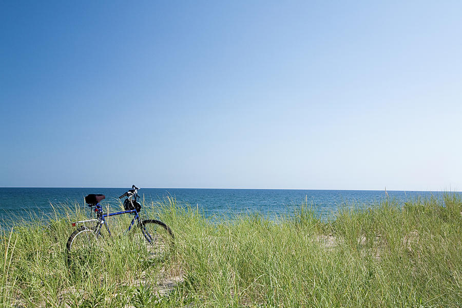 Grass Covering Bicycle Parked On Beach Dune. Photograph