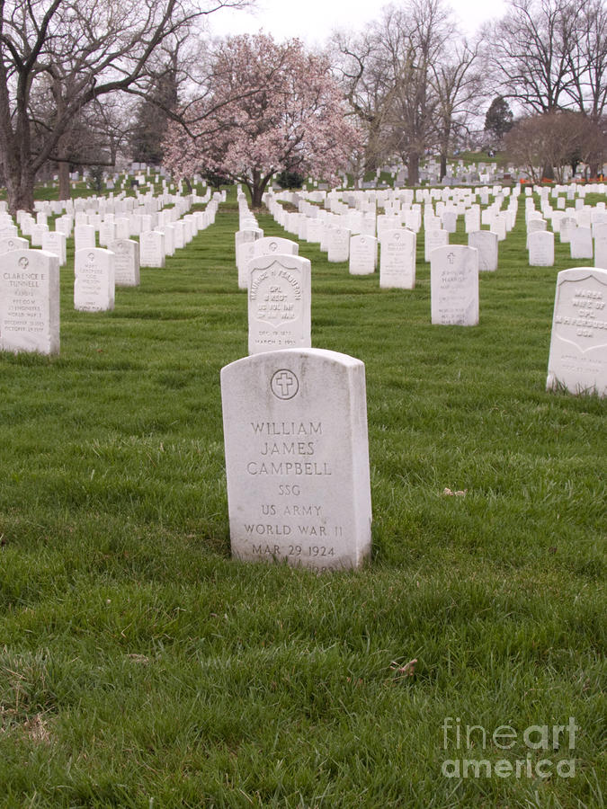 Grave Markers In Arlington National Cemetery Photograph
