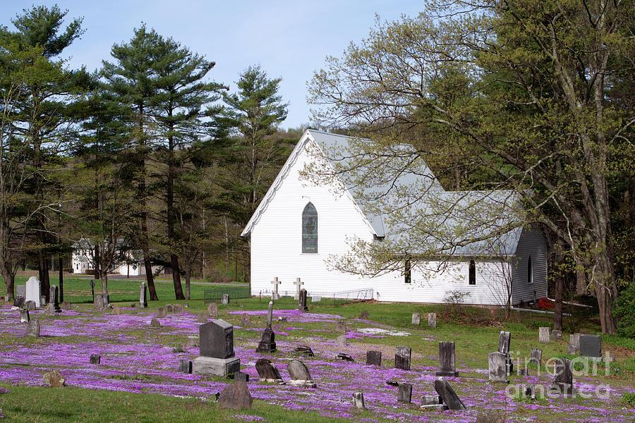 Graveyard Phlox Country Church Photograph
