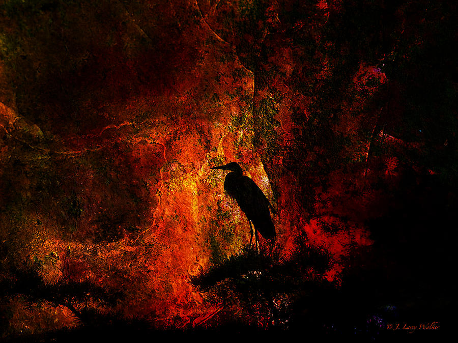 Great Blue Heron Looking At The Sunrise Digital Art  - Great Blue Heron Looking At The Sunrise Fine Art Print