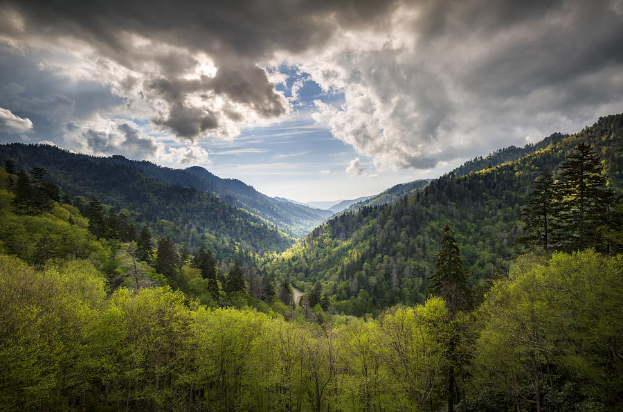 Great Smoky Mountains Landscape Photography - Spring At Mortons Overlook Photograph