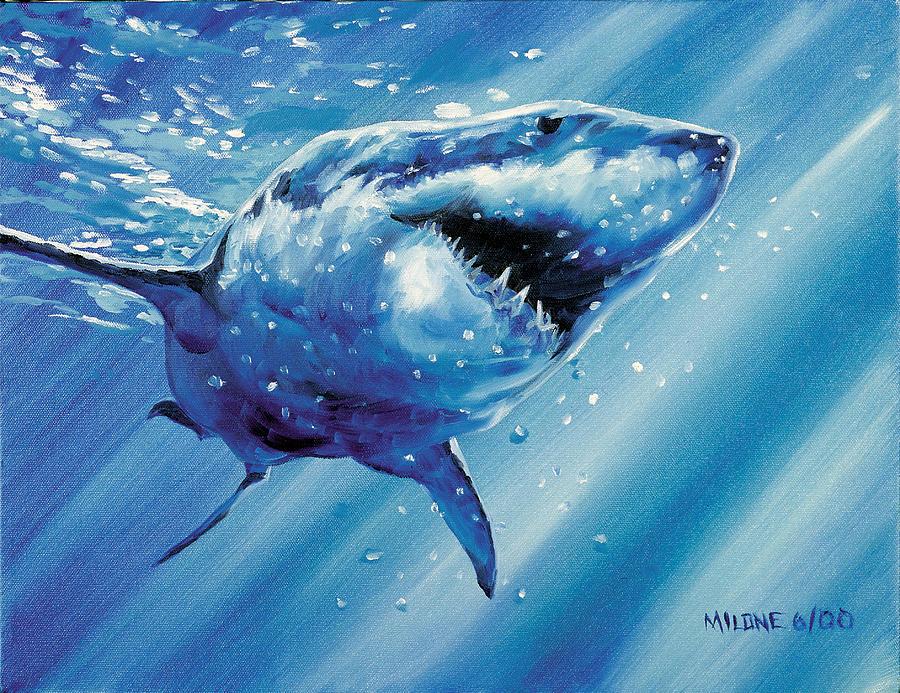 11-8-2015  Great White Shark Painting