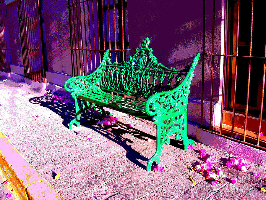 Green Bench By Michael Fitzpatrick Photograph