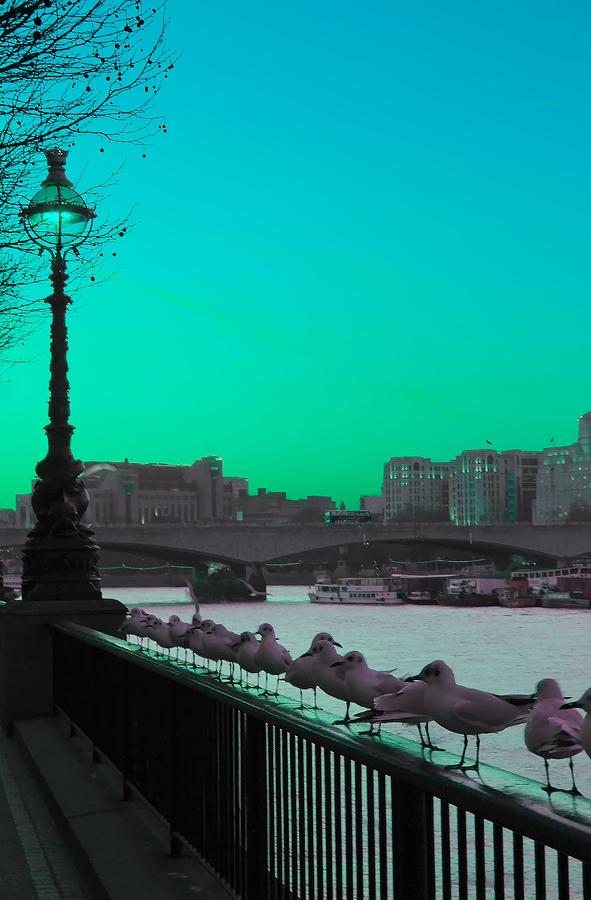 Green Day In London Photograph  - Green Day In London Fine Art Print