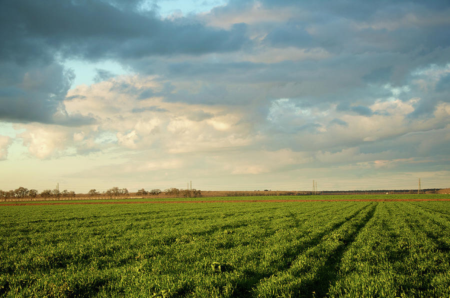 Horizontal Photograph - Green Field With Clouds by Topher Simon photography